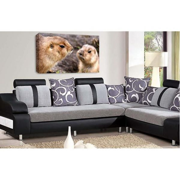 Nose to Nose Beavers Canvas Wall Art Picture Print